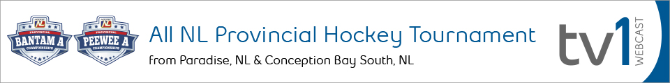 All NL Provincial Hockey Tournament